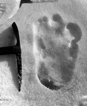 A footprint purporting to be that of the abominable snowman, taken near Mount Everest in 1951.