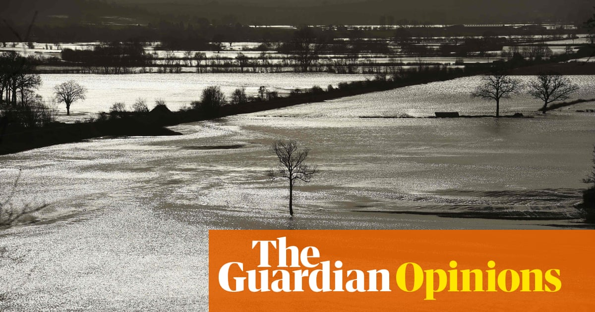 Flooding in the UK isn't an act of God, it's an act of government | Simon Jenkins