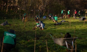Volunteers at a tree-planting event at Beckton District Park South, organised by Trees for Cities in November 2019.