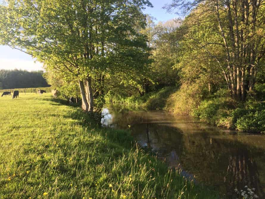The River Frome glides and weaves through the woods and fields of north Somerset