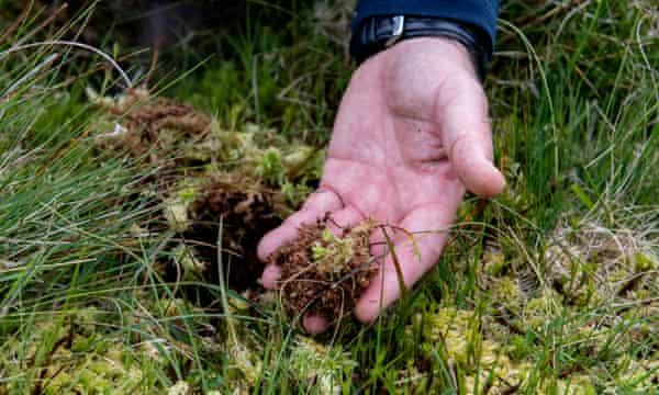 Alan Kearsley-Evans checks the peat on Abergwesyn common.