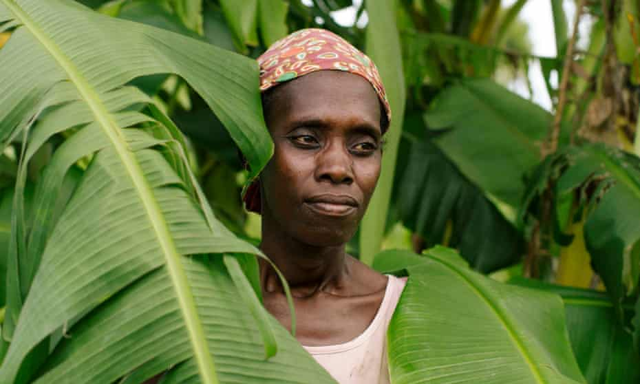 Mother and farmer Palmira Mussa, 38, standing by her banana tree which is being destroyed by locusts
