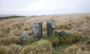 A row of ancient stones on Dartmoor.