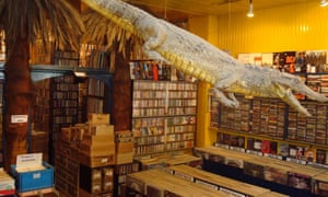 Crocodile suspended from the ceiling in Crocodisc