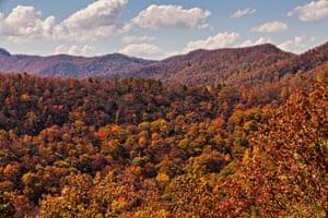 Autumn foliage near Asheville, North Carolina