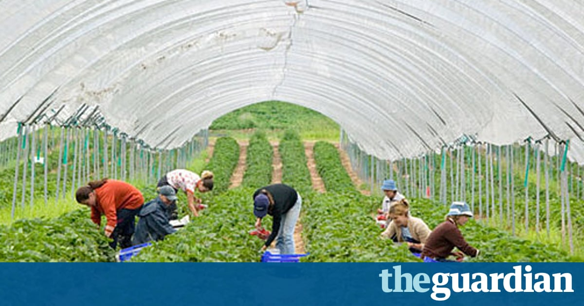 Grayling's claims that UK can grow more food dismissed as 'tripe'