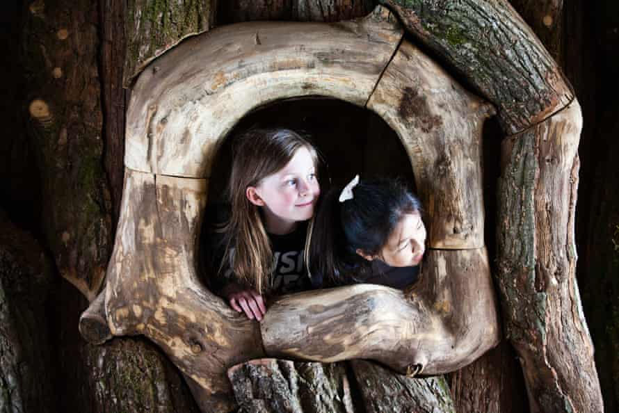 Children take a look out of one of the park's indoor attractions, a massive hollow oak tree.