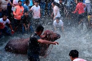 Bhaktapur, NepalNepali bystanders watch as other devotees splash water on a buffalo to be sacrificed during the ninth day of the Hindu Dashain festival. It is the longest and the most auspicious festival in the Nepali calendar and celebrates the triumph of good over evil
