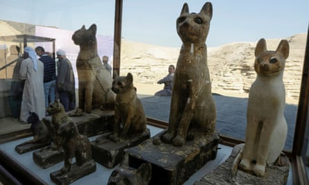 Cat statues on display