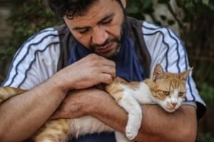A rescued cat gets some TLC at the sanctuary in Kafr Naya