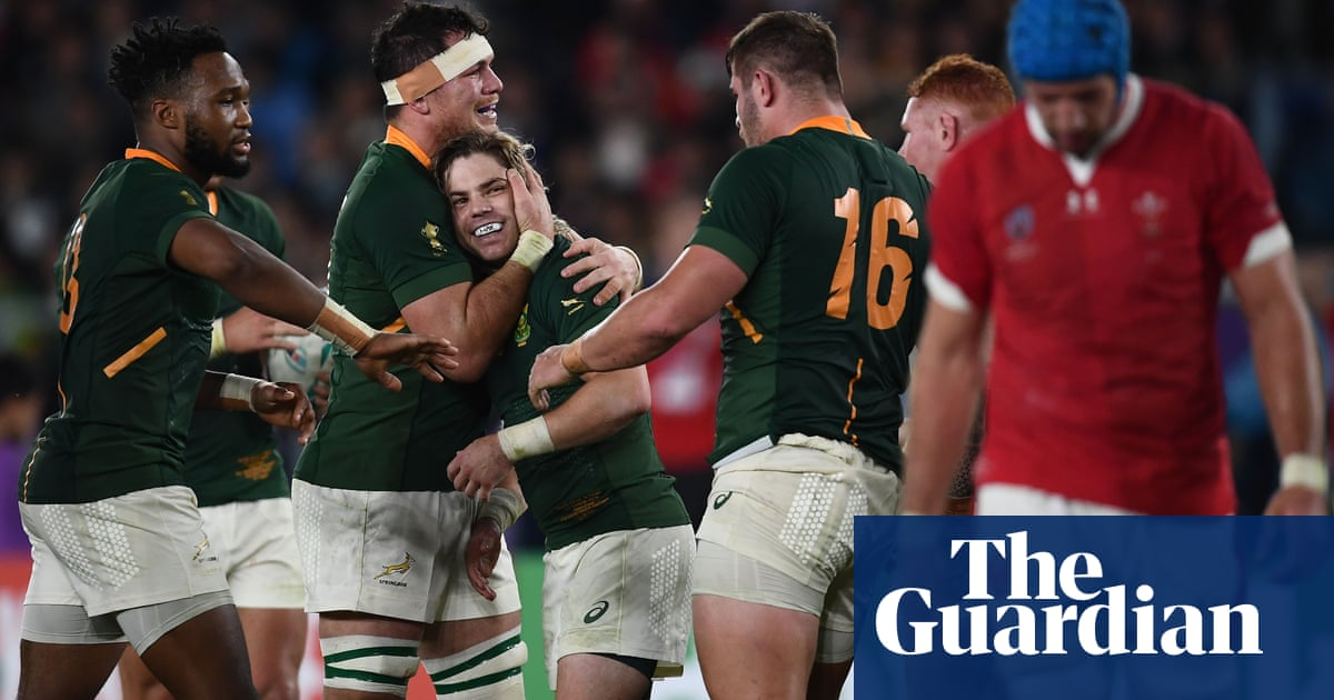South Africa to face England in Rugby World Cup final after beating Wales