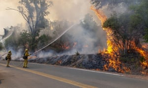 Firefighters hose down a tree during a burn out operation on Scott's Valley Road in Lake County California.