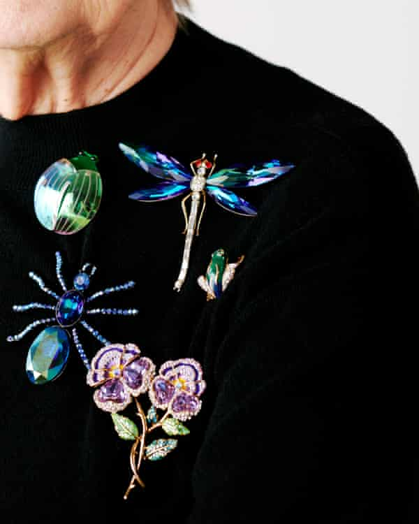 Lady Hale Baroness Hale for the Guardian. Portraits: Kate Peters Styling: Hope Lawrie Hair: Shukeel Murtaza at theonly.agency Make-Up: Riona O'Sullivan Frog brooch, susancaplan.co.uk. Dragonfly, spider and and pansies brooches, all butlerandwilson.co.uk. Beetle brooch, tattydevine.com. Knit dress, marksandspencer.com.