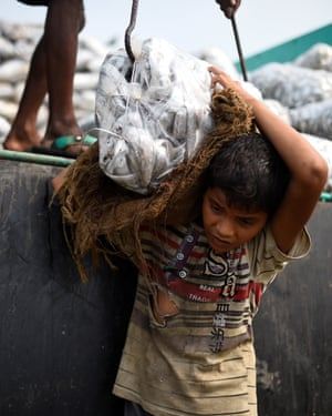 Asma Akter, 10, lifts bags of frozen fish from a delivery truck at Nazirartek fish-drying yard