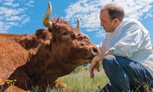 José Gordón of Bodega El Capricho, León, and a bull.