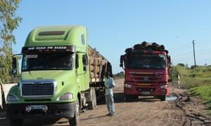 Trucks of woods