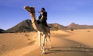 Tuareg camel rider in Niger's Ténéré desert