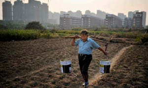 A man carries buckets of water across a vegetable field near a new residential compound in Hefei, Anhui province, China