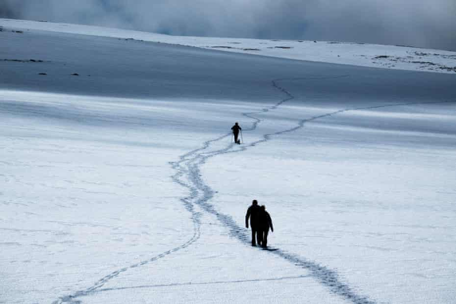 A walker and his dog Max head across the summer snow to Ben Macdui, 27 May