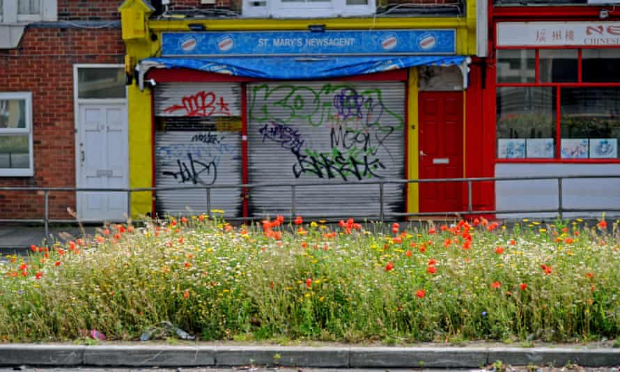 Wild flowers including red poppies and daisies in full bloom on the central reservation on a Brighton road.