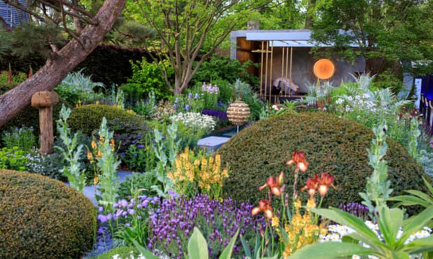 A garden at last year's Chelsea flower show