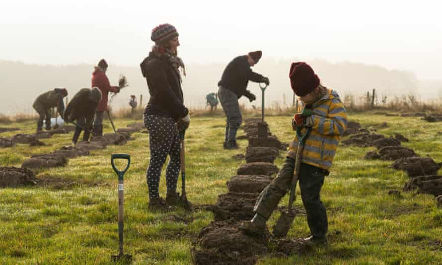 Volunteers help to plant trees for the Woodland Trust.