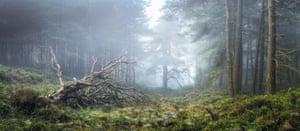 Light on the Land: Simon Baxter (UK) – North Yorkshire, England