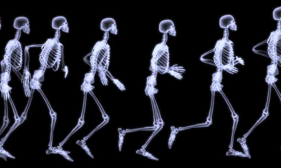 A human skeleton running