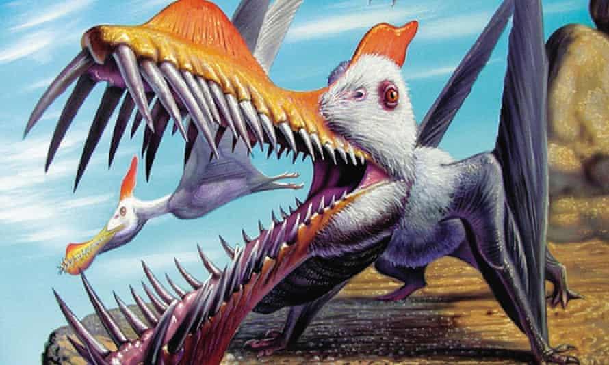 pterosaurs gobbling smaller prerosaur