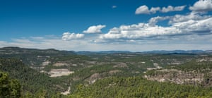The pine forests of the Sierra Madre, outside the town of Creel, Chihuahua, Mexico.