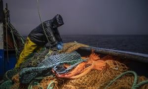 Fishing nets being pulled in