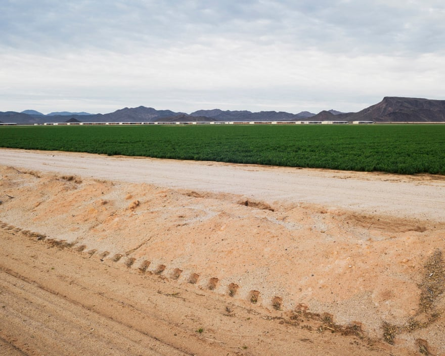 Alfalfa fields and storage warehouses at Fondomonte Farms in Vicksburg, Arizona, USA, 2019