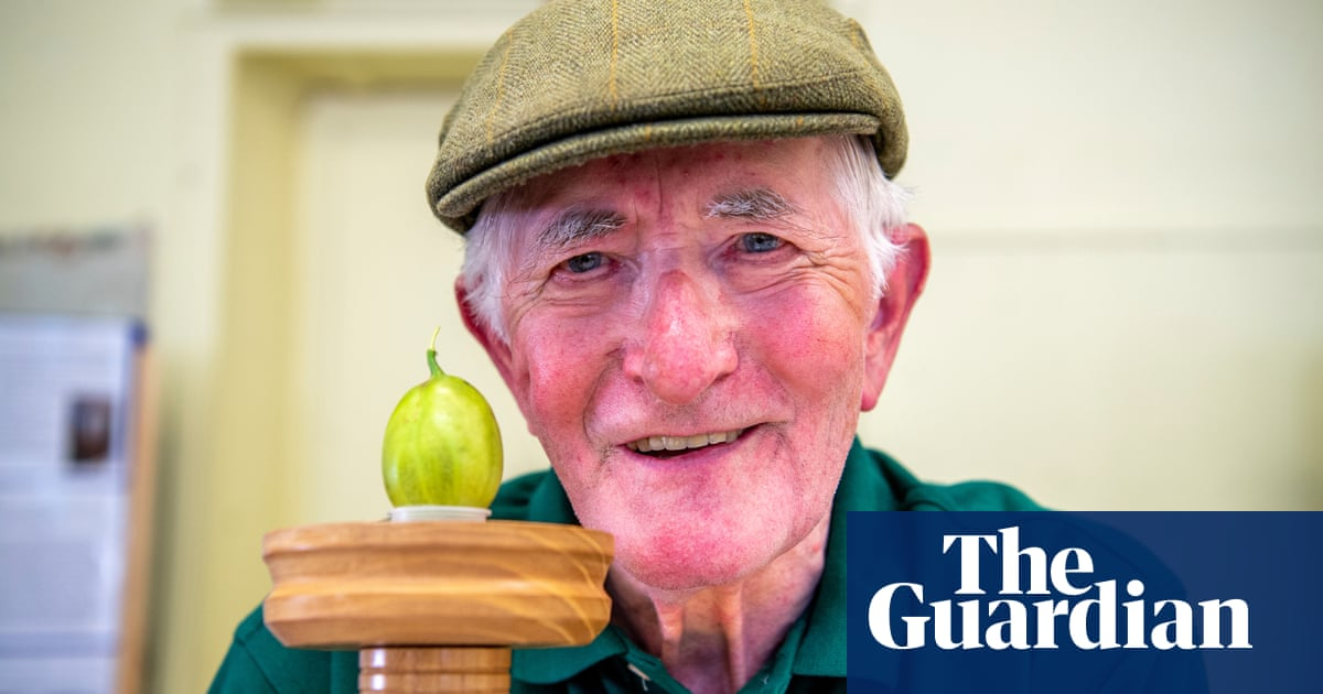 Yorkshire gooseberry competition returns with 85-year-old taking top prize