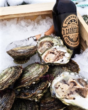 Close up image of oysters in a crate on top of ice in Grebbestad, Sweden