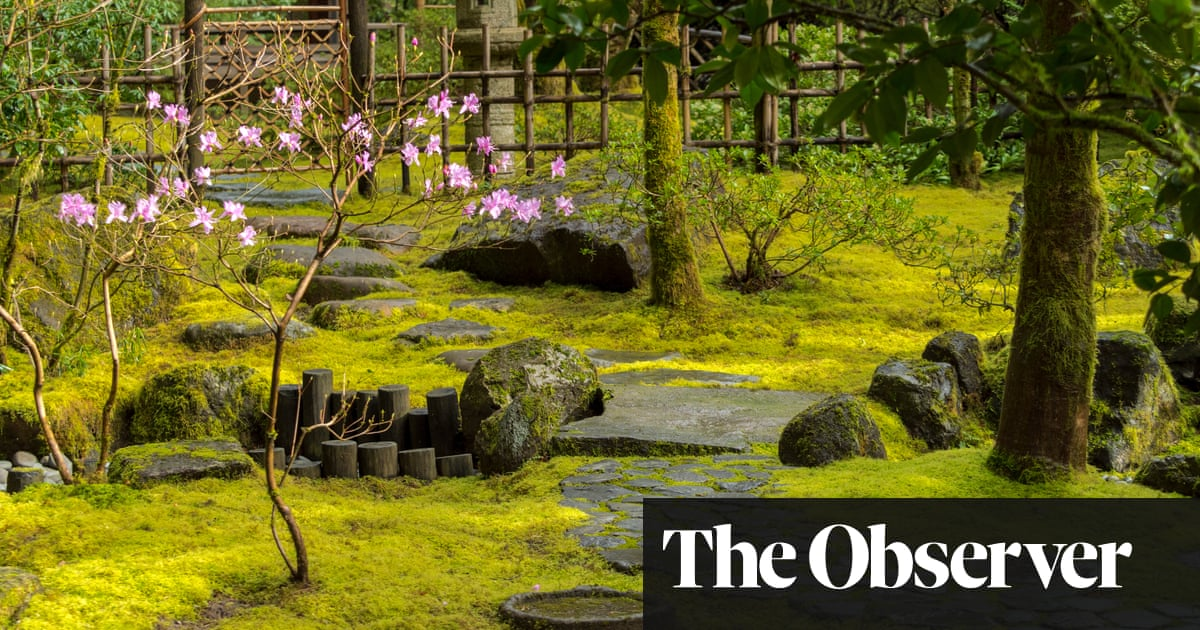 Blade Runners The Joy Of Moss Lawns Life And Style The Guardian