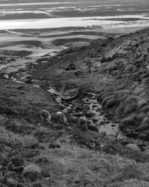 Cumbrian scene by Vanessa Winship