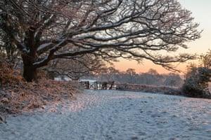 Snow covered High Weald landscape at sunrise, Burwash, East Sussex, England