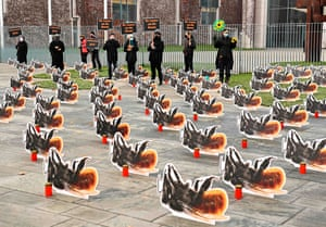 Berlin, Germany. Environmental activists stage a protest outside the Chancellery calling for more insect protection as the topic is discussed in a cabinet meeting