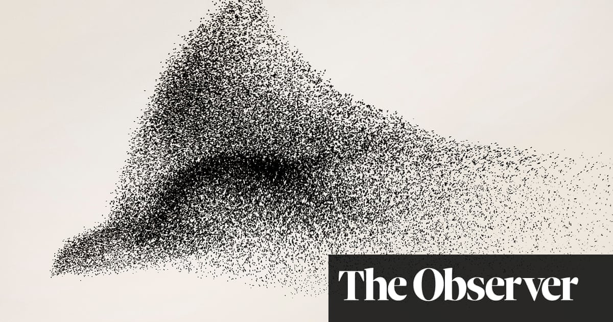 The beauty of starling murmurations – in pictures thumbnail