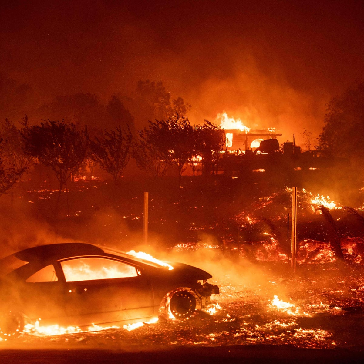 Frightening Footage Shows Wildfire Obliterating Forest near Valencia