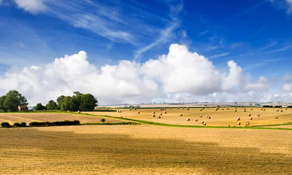 Harvested farmland in the Lincolnshire Wolds.