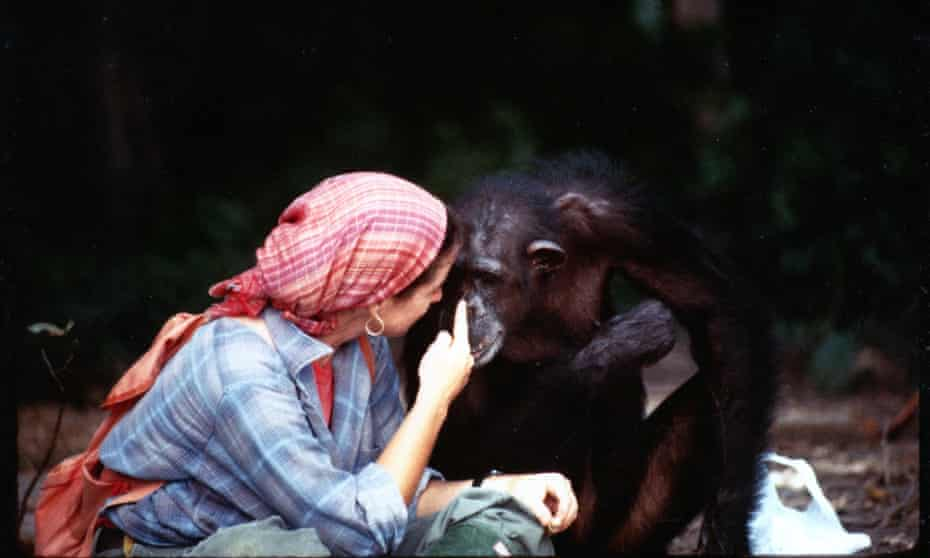 Janis Carter, Lucy Temerlin from Lucy the Human Chimp
