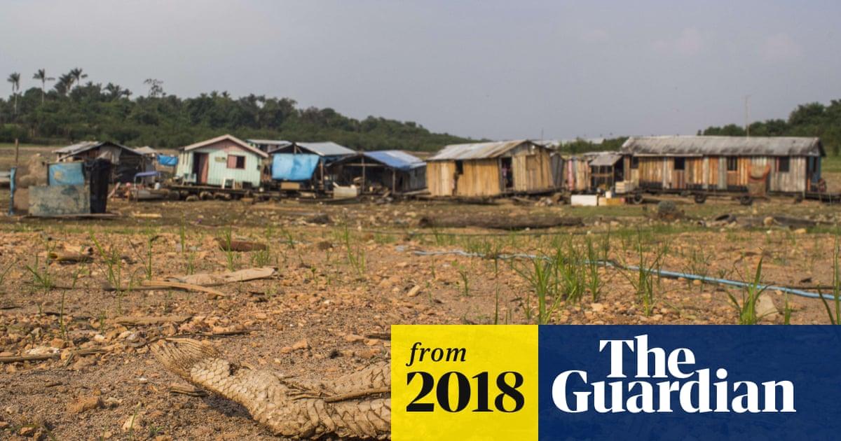 Destruction of nature as dangerous as climate change