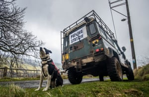 A dog waits patiently by a polling station sign on the back of a Land Rover in Low Row, Yorkshire