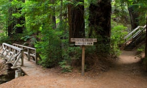 Hiking trails at Pfeiffer Big Sur state park, California.