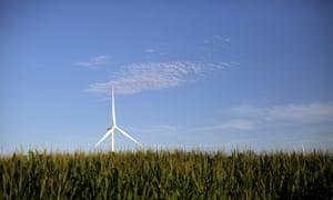 A wind turbine is seen in a field of corn in Haverhill, Iowa.