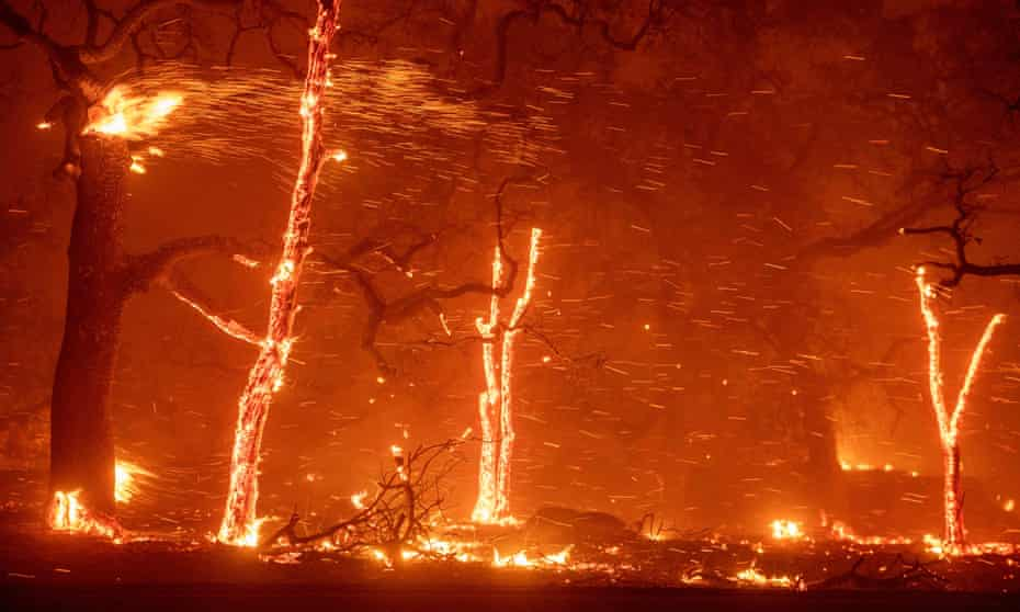 Embers fly as wind and flames from the Camp fire tear through Paradise, California.