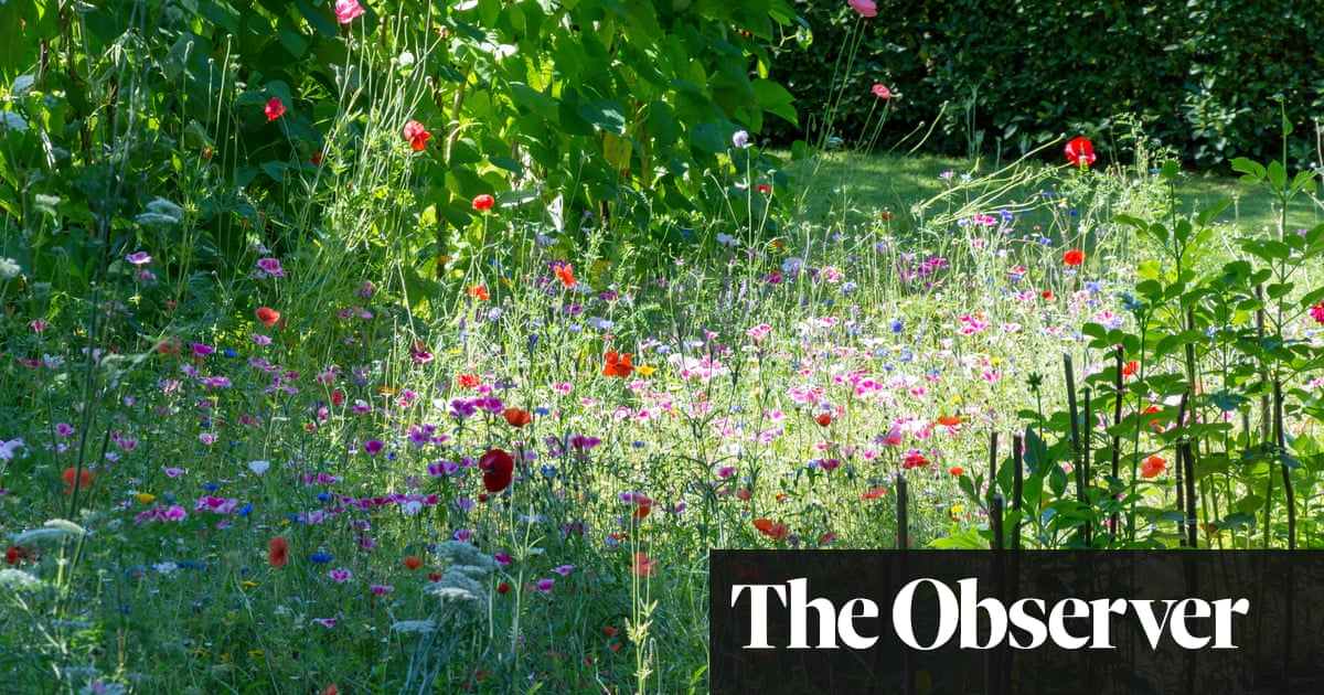 How to make the most of gardening's therapy bonus