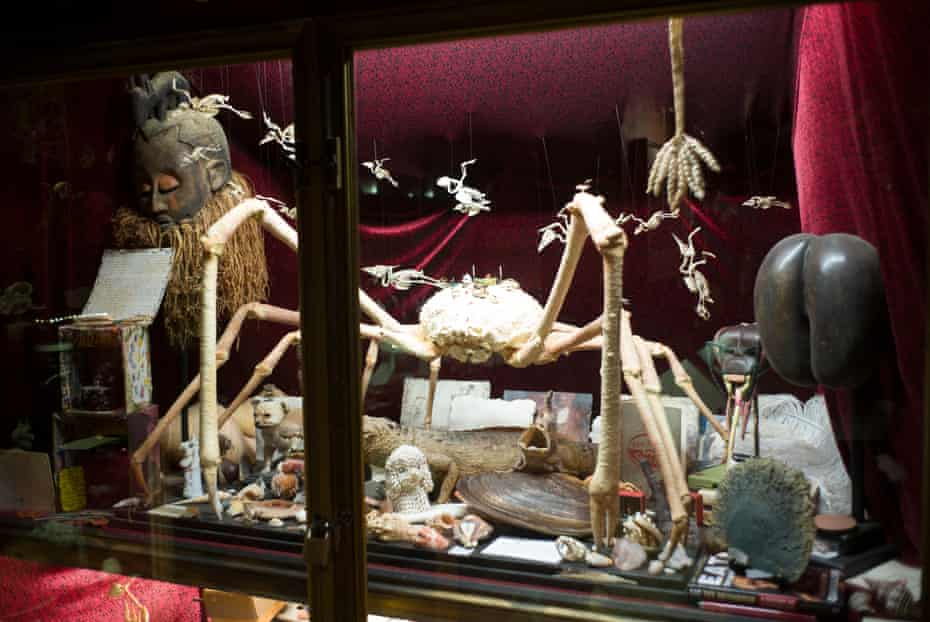 Curiosities … a cabinet of birds, beasts and wonders.