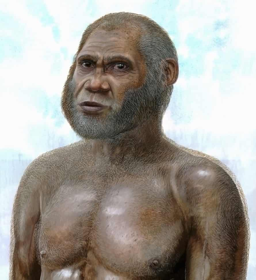 An artist's reconstruction of a Red Deer Cave man.